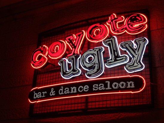 Coyote Ugly Saloon Las Vegas