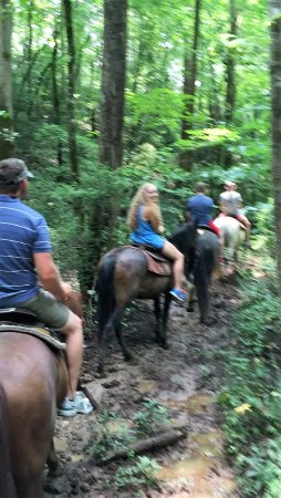 Townsend, TN: muddy but exciting