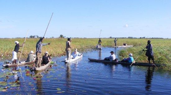 Island Mobile Safaris