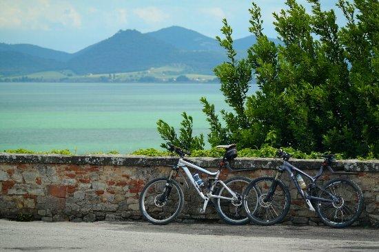 Terontola, Italia: Lago Trasimeno in schitterend fietsgebied