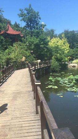 Dalian Botanical Garden : photo0.jpg