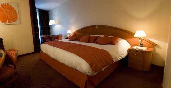 Photo of Hotel Palladia Toulouse