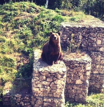 Zoopark Dobrich