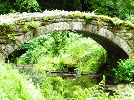 Cragside House and Gardens: Bridge to the Powerhouse