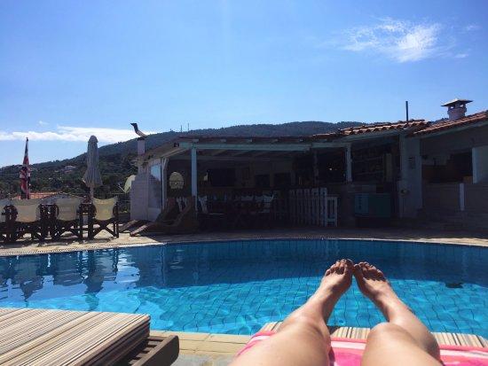Elsa Hotel: Pool and bar area