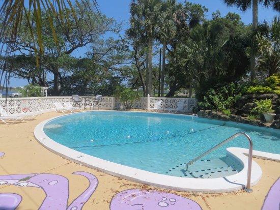 River Lily Inn Bed & Breakfast: Pool