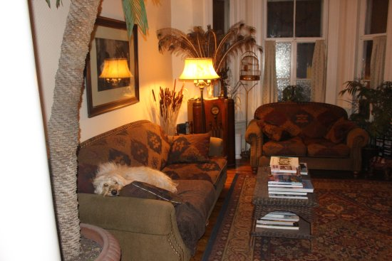 Auberge The King Edward Bed and Breakfast: Guest sitting area presided over by lovely Sunny the golden doodle.
