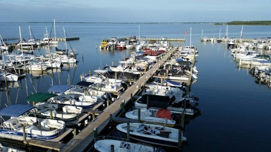 Boat rentals picture of rehoboth bay marina of dewey for Rehoboth beach fishing