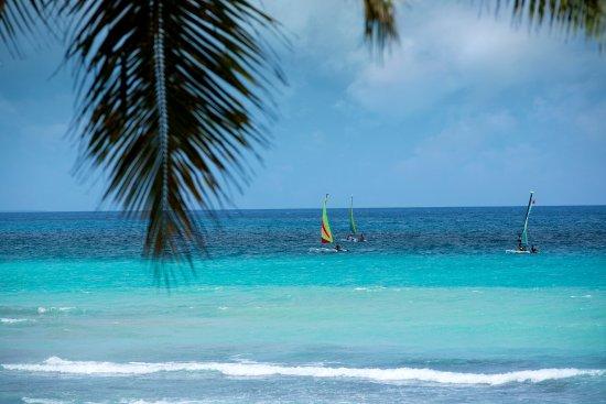 Viva Wyndham Dominicus Beach 127 ̶1̶4̶7̶ Updated