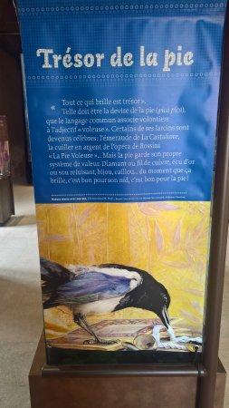 Saissac, Frankrijk: Trésor de la Pie