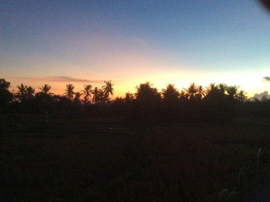 Lodtunduh Sari Photo