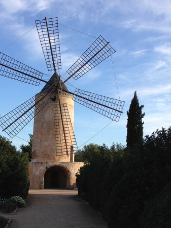 Hilton Sa Torre Mallorca: Die alte Windmühle