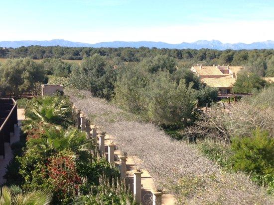 Hilton Sa Torre Mallorca: Blick aus dem Fenster ins Hinterland