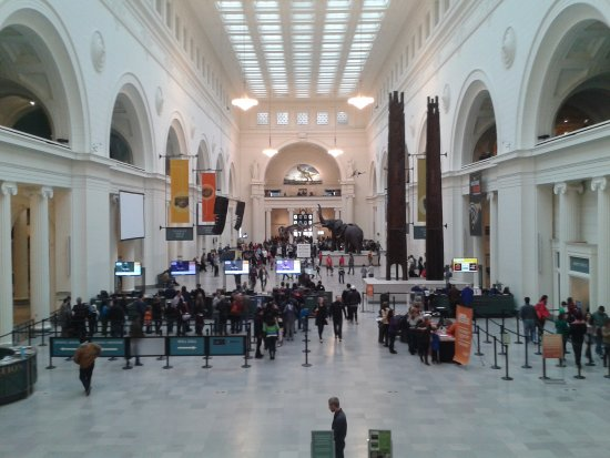 The Field Museum: The Fiel Museum main hall