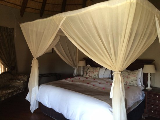 Arathusa Safari Lodge: Standard room