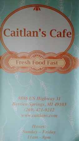 Berrien Springs, MI: Caitlan's is great for a quick bite to eat or a full-on stuff yourself with the best food ever!