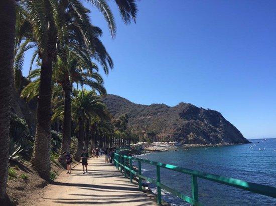 Catalina Island Casino: Catalina Island