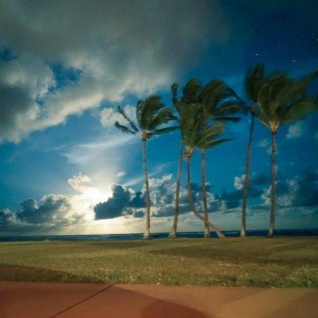 Kauai Beach House 사진
