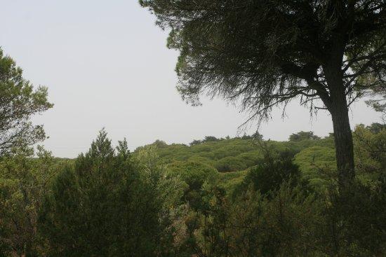 Parque Natural Las Breñas