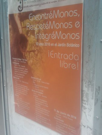Jardin Botanico Dr. Alfredo Barrera Marin: Jardin Botanico puerto morelos seminar june 2016