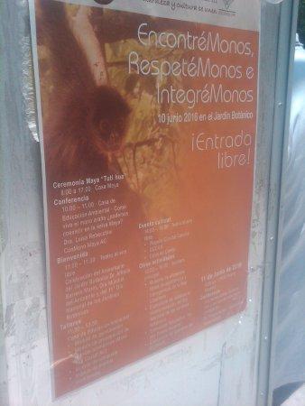 Jardin Botanico Dr. Alfredo Barrera Marin pto morelos