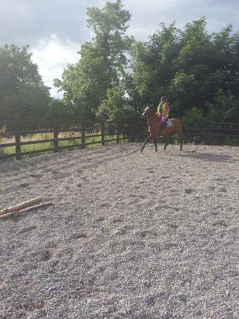 Kilfinane, Irlanda: trotting around on Sammy