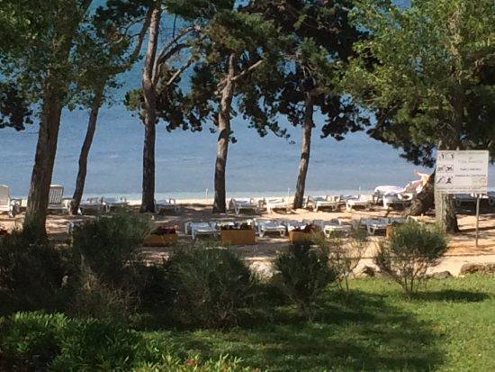 Foto de Villa Rosetta Hotel