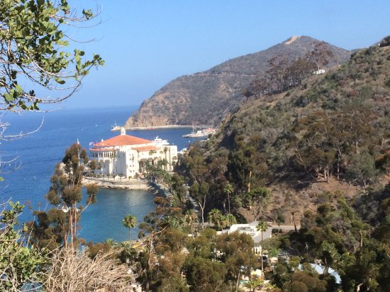 Hamilton Cove Villas-bild