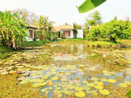 Battambang Resort: Zimmer am See