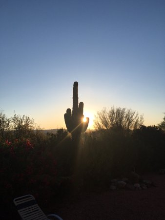 Ana's Casa de Saguaro: I woke up at sunrise to take this picture. My camera could not capture the beauty but it was ama