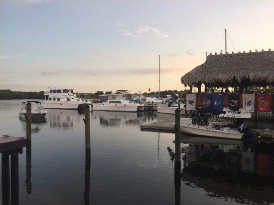 I.C.Sharks Seafood Market and Boat Rental