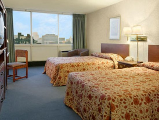 University Hotel and Suites : Guest Room