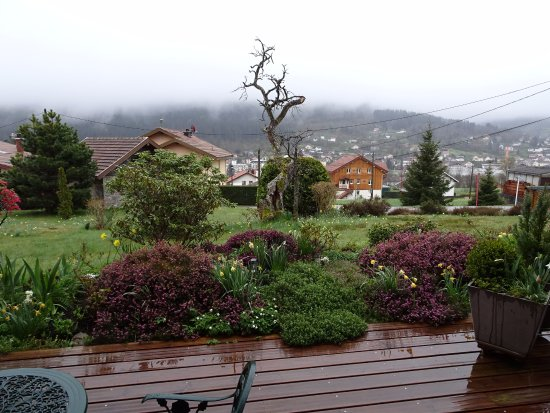 Chalet l'Epinette : Brouillard mais jonquilles en fleur
