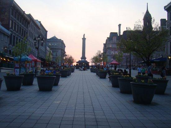 Montreal, Canadá: Local muito agradável, limpo, florido e com opções excelentes de restaurantes!!