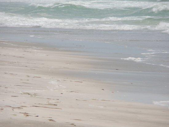 Casa del Mar Beach Resort Picture