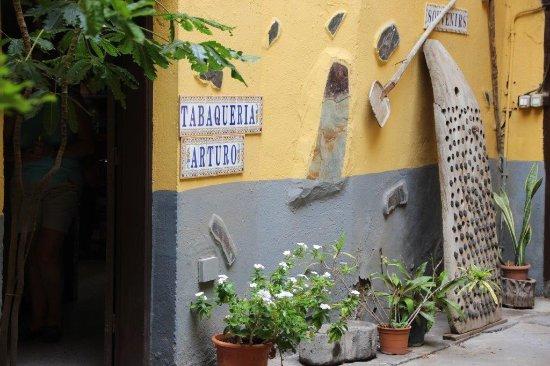 Garachico, Spain: Patio und Hintereingang