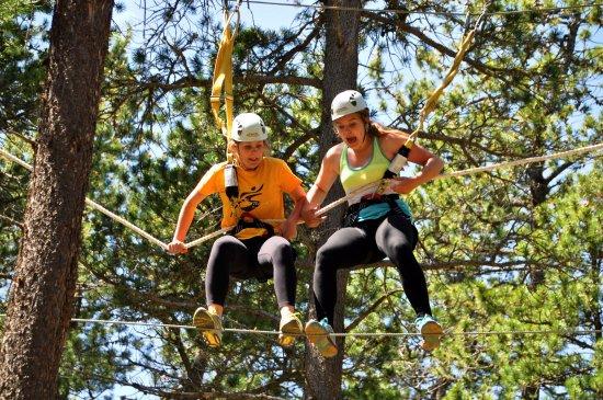 Treeosix Adventure Parks