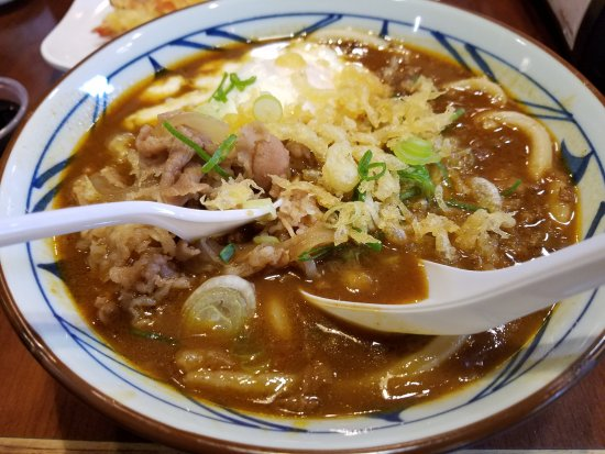 Curry Udon- mmmm...