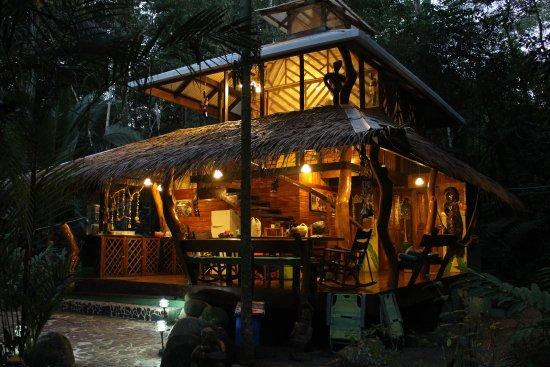 Congo Bongo Boutique Guest Houses: The Dream Palm House