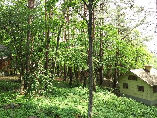 Mt. Osorakan