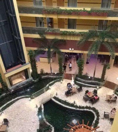 Embassy Suites by Hilton Dorado del Mar Beach Resort: photo0.jpg