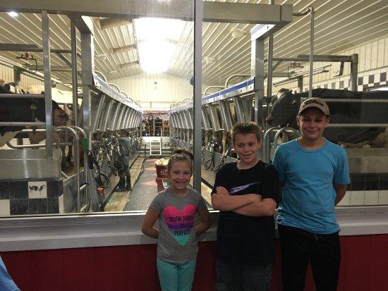 Dairy View: photo2.jpg