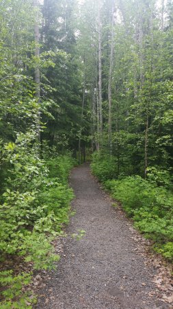 Fairbanks Princess Riverside Lodge: Enjoyed a walk around the property.