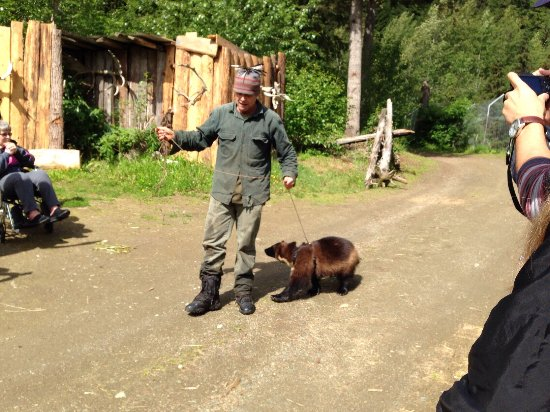 Kroschel Films Wildlife Center: photo4.jpg