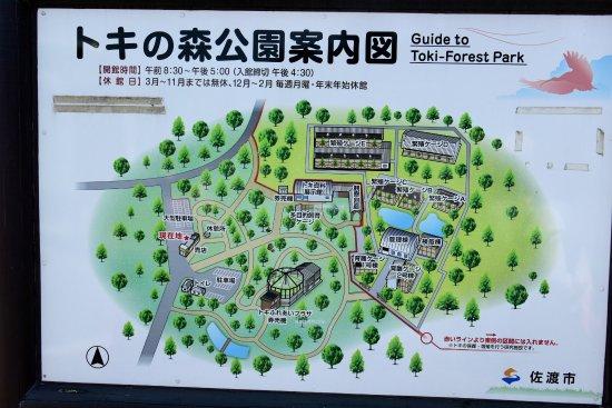 Toki no Mori Park