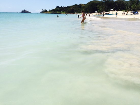 Kailua Beach Park: photo8.jpg