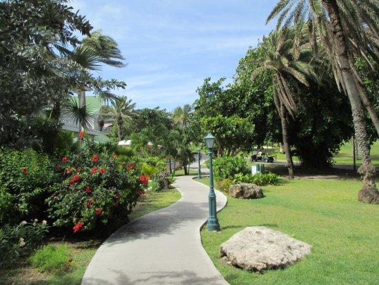 St. James's Club: Beautifully kept grounds, plenty of walks