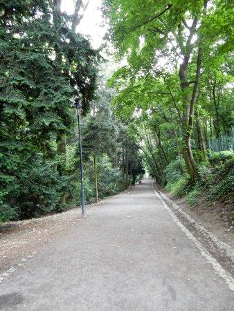 Horsky Park: Parc