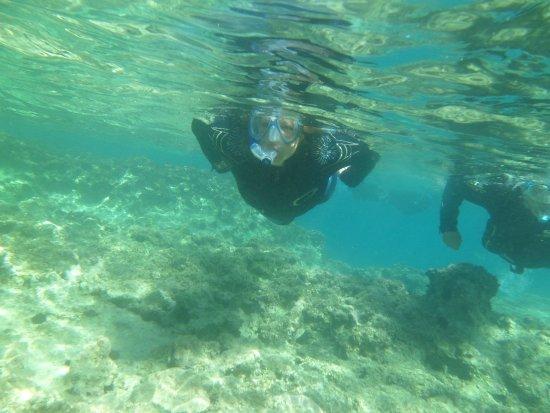 Omega Divers Chania Diving Center: Snorkeller!