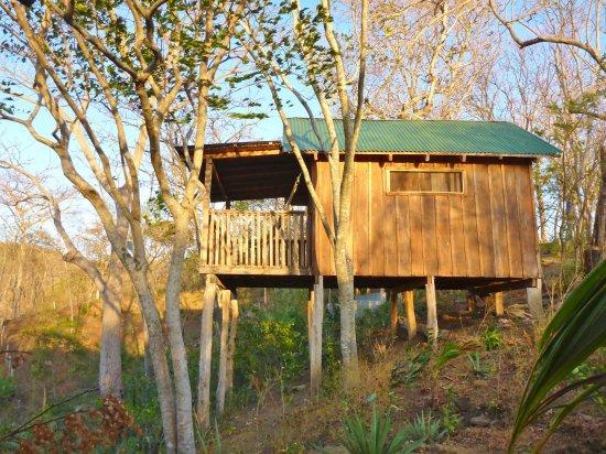 Las Mananitas: Wooden cabin